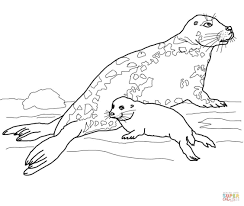 zebra color page coloring pages animals zebra coloring pages picture mammal