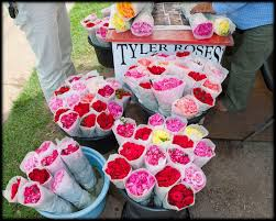 17 best tyler tx favorites images on pinterest texas travel