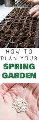 49 best gardening 101 images on pinterest gardening vegetable