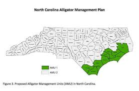 alligators in map nc alligator could with management plan approved