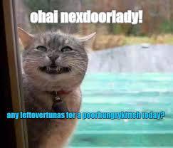 Meme Cheezburger - ohai kitteh http cheezburger com 9055472640 cats pinterest