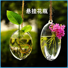 wholesale clear glass terrarium globe hanging terrarium glass vase