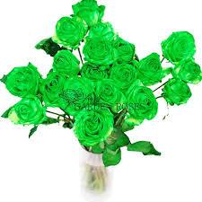 green roses bulk green flowers dendrobium orchids