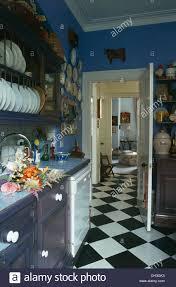 White Blue Kitchen Black White Chequer Board Vinyl Floor In Blue Kitchen With Plate