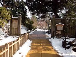 japan winterschool kenrokuen garden 3 junkyard