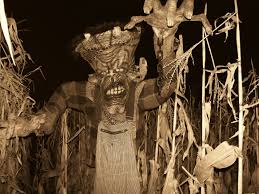 spooky stalks milwaukee u0027s only haunted cornfield about us and news