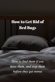 Bed Bugs How Do You Get Them What Are Bed Bugs And How Do You Get Rid Of Them Ktactical