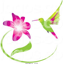 royalty free humming bird and pink and purple flower logo by