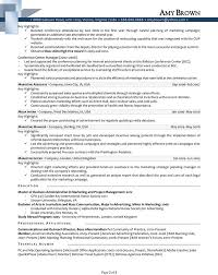 Sample Resume Of It Professional by Marketing Manager Resume Sample Resume Of Online Marketing