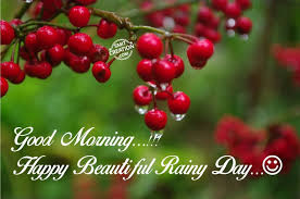 quotes on good morning in bengali 55 best rainy day wish pictures and photos