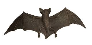 amazon com safari ltd incredible creatures brown bat toys u0026 games