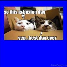 Boxing Day Meme - 56 very funny boxing memes