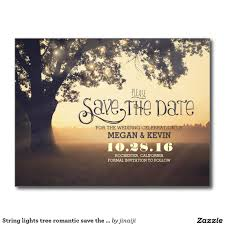 string lights tree romantic save the date postcard wedding