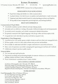 sample resumes for computer skills job skill examples for resumes