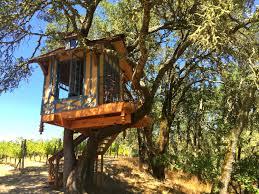Cat Treehouse Ecotourism U2014 O2 Treehouse