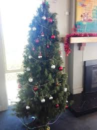 White Christmas Decorations Melbourne by Christmas Trees Melbourne Decorated