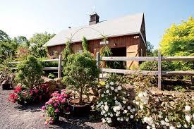 best new england nurseries u0026 garden centers new england today