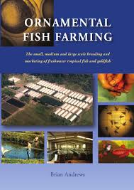 ornamental fish farming the small medium and large scale