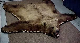 Taxidermy Bear Rug Bear Rug Roselawnlutheran