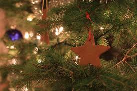 Homemade Christmas Ornaments Dough Cinnamon How To Make Cinnamon Applesauce Ornaments The Frugal