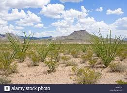 Texas scenery images West texas desert scenery stock photo royalty free image jpg