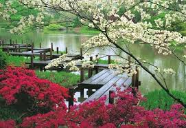 there are 8 most beautiful flower garden in the world e news source