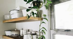 the best indoor plants plant small potted plants wonderful best pots for indoor plants