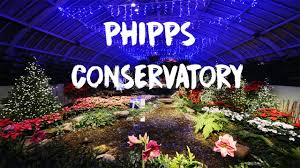 phipps conservatory christmas lights phipps conservatory christmas pittsburgh short film 2016 youtube
