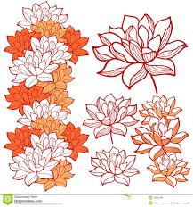 stylish lotus flowers ornaments stock vector image 40803296