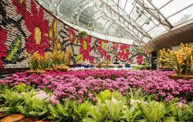 Botanic Garden Sydney Royal Botanic Gardens Information For Parents Visiting With Children