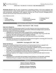 career level u0026 life situation templates resume genius