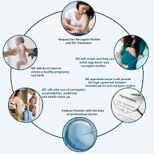 Kic Surrogacy Services And Costs Surrogacy Center Hyderabad