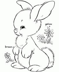 rabbits coloring pages get this simple rabbit coloring pages to print for preschoolers