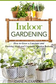 indoor gardening for beginners start an indoor veggie garden