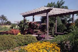 Trellis Landscaping Sulis Sustainable Urban Landscape Information Series University