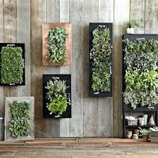 indoor wall garden indoor wall herb garden vertical wall garden indoor wall mounted