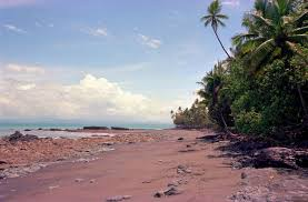 the best black sand and white sand beaches in costa rica javi u0027s