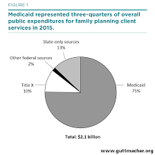 public funding for family planning and abortion services fy 1980