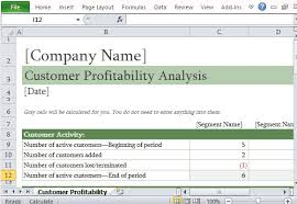 Exle Of Data Analysis Report by How To Easily Perform A Customer Profitability Analysis In Excel