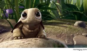 Turtle Meme - baby turtle meme guy