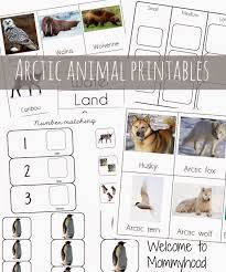 arctic activities and free printables welcome to mommyhood
