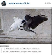 Crow Meme - f k the pope s dove meme by lulubest memedroid