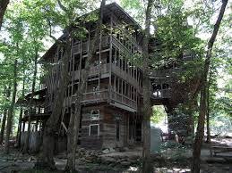 chambres dans les arbres une maison de 80 chambres dans un arbre à 30 mètres de haut