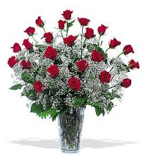 Baby Breath Tf117 1 Two Dozen Red Roses With Baby Breath Victor The Florist