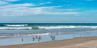 New Smyrna Beach Florida Map by Photo Gallery Of Flagler Avenue New Smyrna Beach Fl
