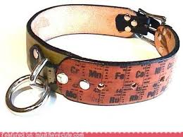 periodic table of dogs periodic dog collar must have cool cool collectible geeky products
