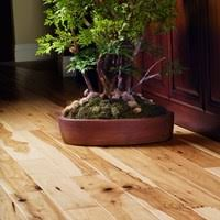 garrison hardwood flooring at cheap prices by hurst hardwoods