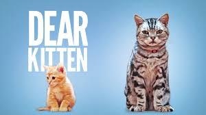 dear kitten youtube