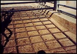 floor in non slip flooring for livestock handling