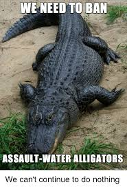 Alligator Memes - we need to ban assault water alligators made on imgur we can t